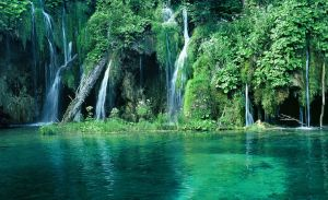 croatia-green-forest-and-waterfall