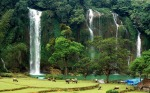 free-Vietnam-Travel-Guide1