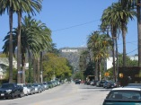 Hollywood_neighborhood (1)