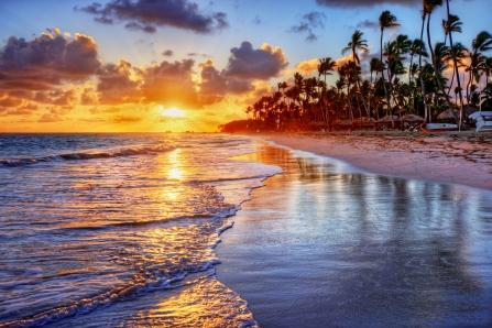 Brilliant ocean beach sunrise with palm trees